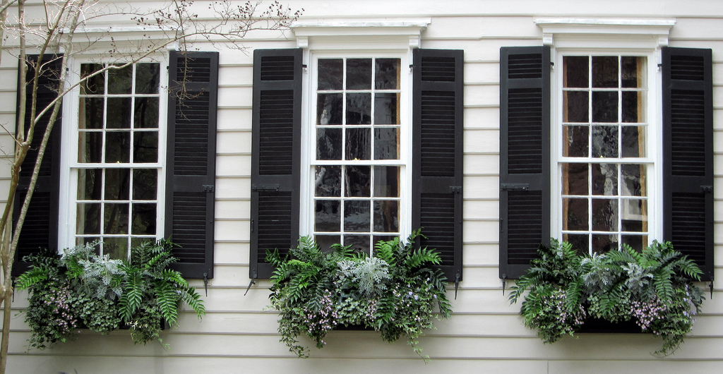 Common Mistakes to Avoid when Choosing Shutters